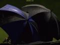FC Castovanni Eagles - Kalju FC III (19.08.16)-0971