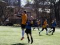 FC Soccernet - FC Castovanni Eagles II (10.04.16)-124