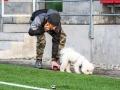 FC Flora U19 - FC Kose (31.10.20)-0569