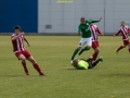 FC Flora U21 - FC Santos (12.06.16)-0106