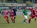 FC Flora U21 - FC Santos (12.06.16)-0301