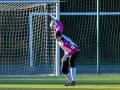 Nõmme Kalju FC III - Tallinna FC Castovanni Eagles (III.N)(11.10.15)-8916